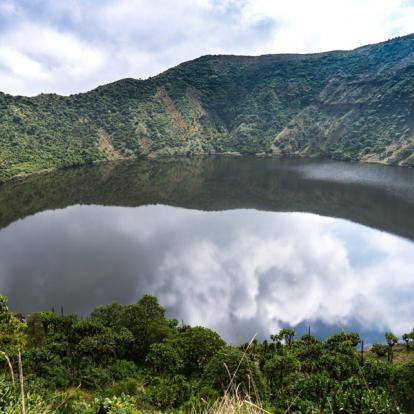 Voyage au Rwanda : Gorilles, Primate et Lacs