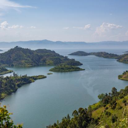 Circuit au Rwanda : Gorilles, Primate et Lacs