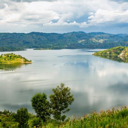 Circuit au Rwanda : Immersion au Pays du Gorille