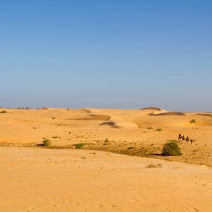 Voyage au Sénégal : Rencontre et Découverte