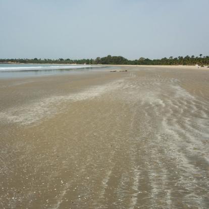 Voyage au Sénégal : Circuit Nature au Sénégal Oriental
