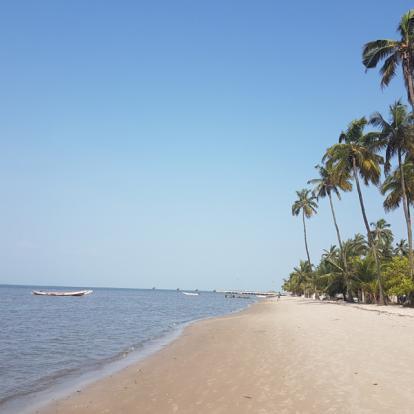 Voyage au Sénégal : Panorama du Sénégal