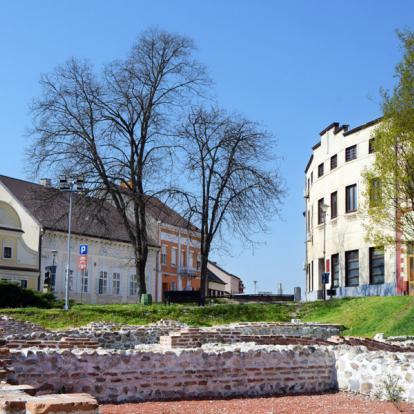 Circuit en Serbie : Nature, cultures & découvertes au pays de la framboise