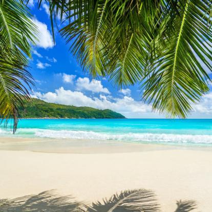 Voyage aux Seychelles : Séjour Cocos de Mer aux Seychelles