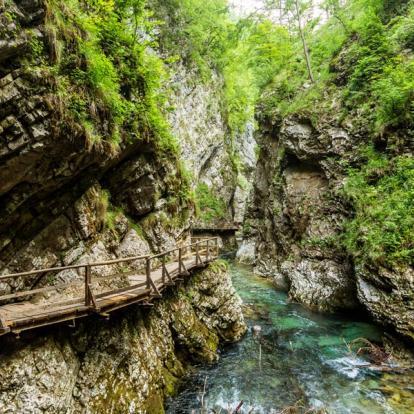 Voyage en Slovénie : Ljubljana et Bled - perle des Alpes Juliennes
