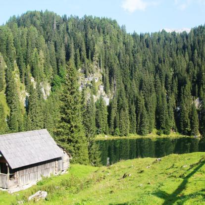 Voyage en Slovénie : Paradis Slovène