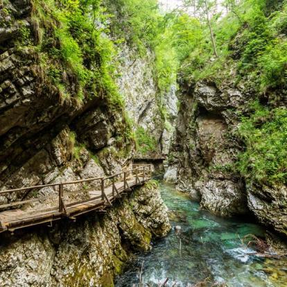Circuit en Slovénie : Slovénie & Croatie en famille