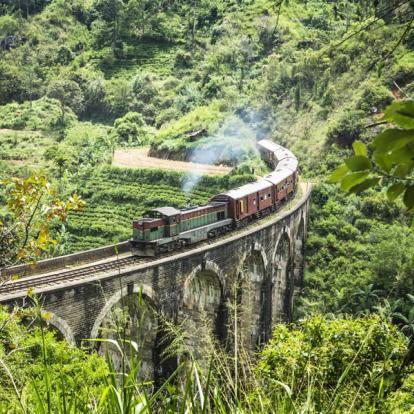 Circuit au Sri Lanka : Backpacker Tour au Sri Lanka