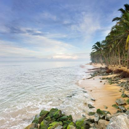 Voyage au Sri Lanka : .Le Sri Lanka en Famille
