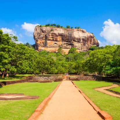Circuit au Sri Lanka : .Le Sri Lanka en Famille