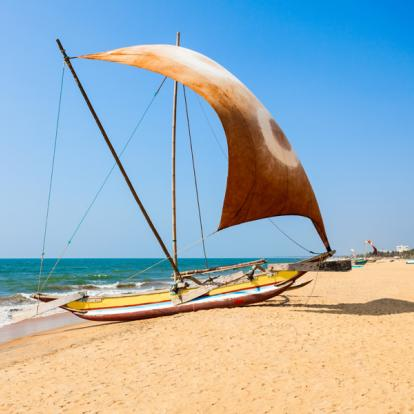 Circuit au Sri Lanka : Le Triangle Culturel