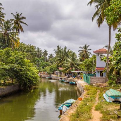 Voyage au Sri Lanka : Le Triangle Culturel
