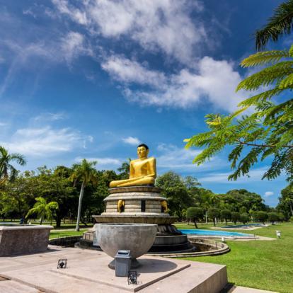 Voyage au Sri Lanka : Sensations