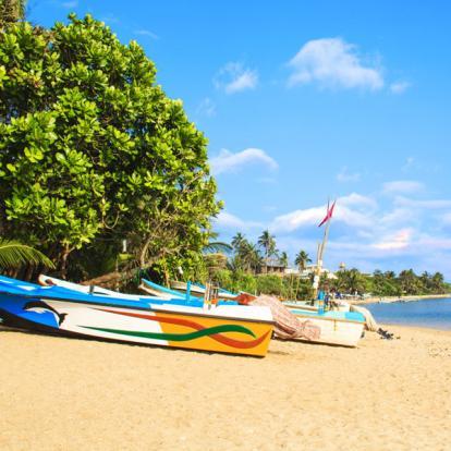 Circuit au Sri Lanka : Le tour du Sri Lanka