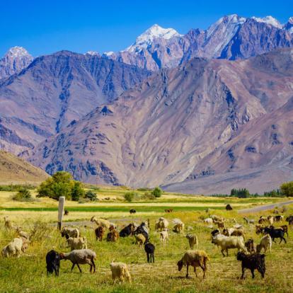 Circuit au Tadjikistan: Decris-moi le Tadjikistan