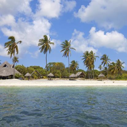 Safari en Tanzanie : Terre et mer, Géants de Tanzanie