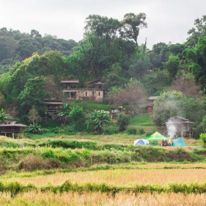 Voyage en Thaïlande : Merveilles de Thaïlande et secrets d'Angkor
