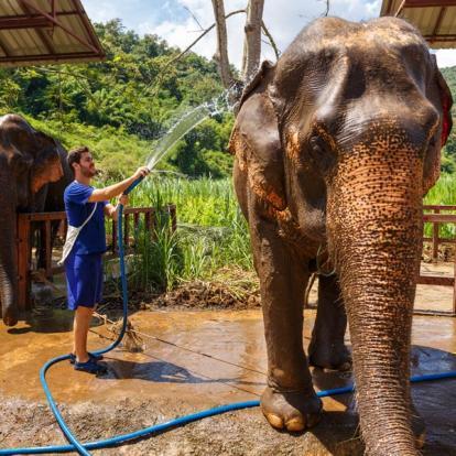 Voyage en Thaïlande : Mosaïque de Thaïlande