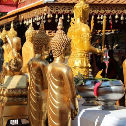 Voyage en Thaïlande : Sur la Piste des Elephants