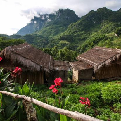 Voyage en Thaïlande : Trek à la Rencontre des Ethnies Du Nord