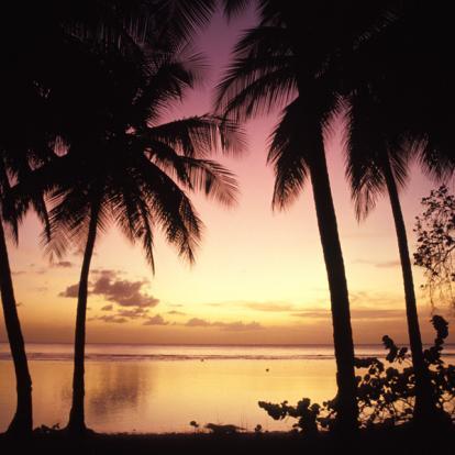 Voyage à Trinité et Tobago: A la découverte de Tobago