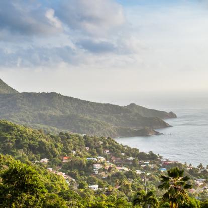 Voyage à Trinité et Tobago: La Facette Sauvage de la Caraïbe