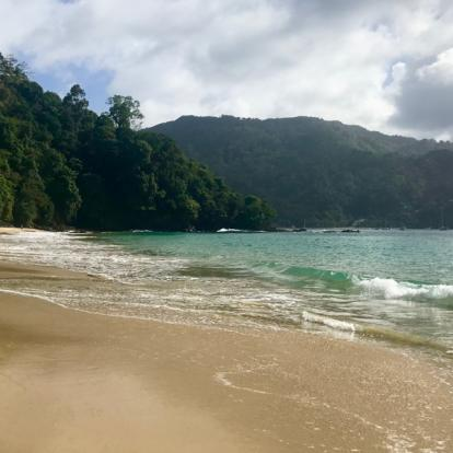 Voyage à Trinité et Tobago: Les plus belles plages de Tobago