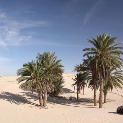 Voyage en Tunisie : Evasion Saharienne