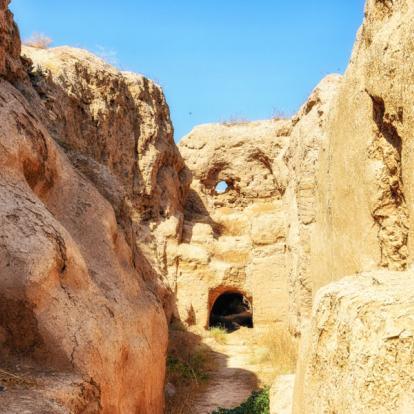 Cirrcuit au Turkménistan : Entre le Désert et la Sogdiane Historique