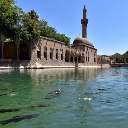 Circuit en Turquie : La Turquie Orientale