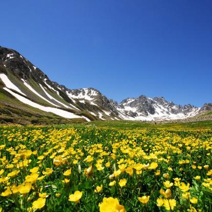 Circuit en Turquie : Le Mont Ararat et les sommets des bords de la mer Noire