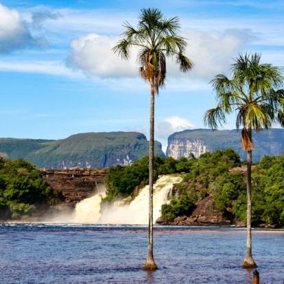 Voyage au Venezuela : Le meilleur du Venezuela
