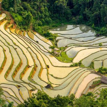 Voyage au Vietnam: La Boucle du Ha Giang