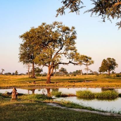 Circuit au Zimbabwe : Voyage Découverte du Zimbabwe en Terre Ndébélé