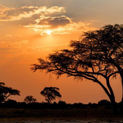 Autotour sur Mesure Zimbabwe : Grand Zimbabwe