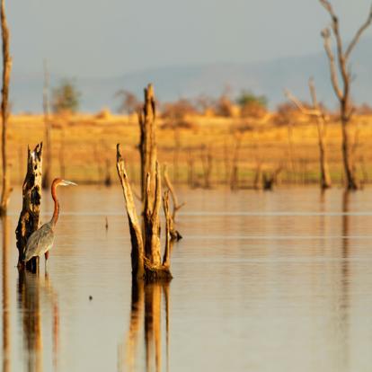 Voyage au Zimbabwe : Les Splendeurs du Zimbabwe en Famille