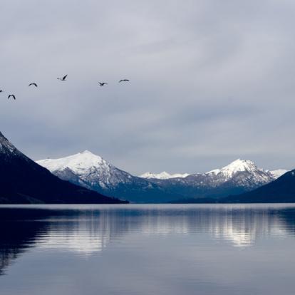 Circuit en Argentine : Le Best Of de la Patagonie