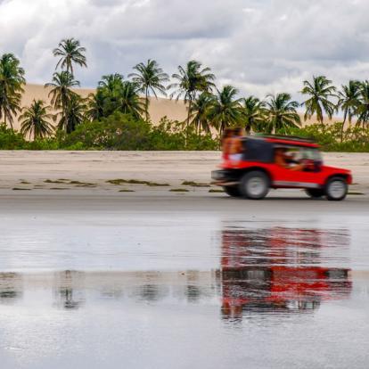 Voyage Brésil : Sous Le Soleil Exactement
