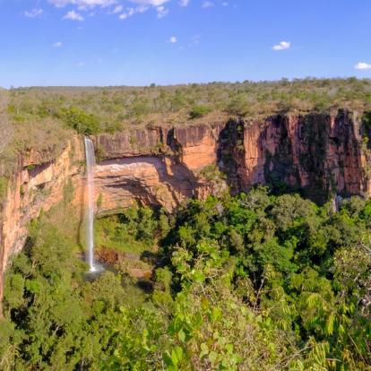 Voyage au Brésil : Vert Brésil