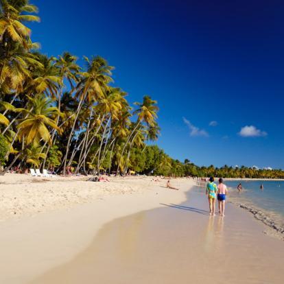 Voyage en Martinique: Le Carnaval en Martinique