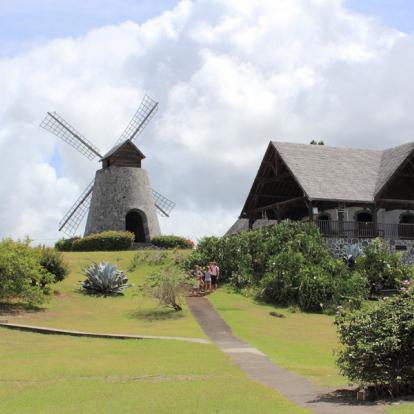 Circuit en Martinique: Route du Rhum du Sud au Nord