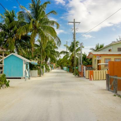 Circuit au Belize - Faune et flore sauvage du Belize