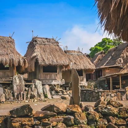 Voyage en Indonésie - A la rencontre des Dragons de Komodo