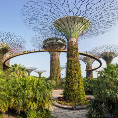 Voyage en Indonésie - De Singapour à Bali, les contrastes de l'Asie