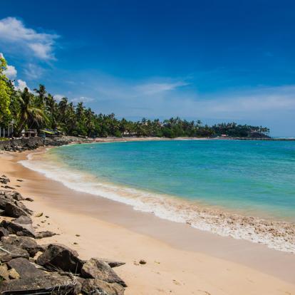Voyage au Sri Lanka - Les Classiques du Sri Lanka en Hiver