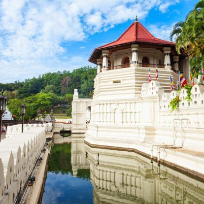 Voyage au Sri Lanka - L'été en Famille
