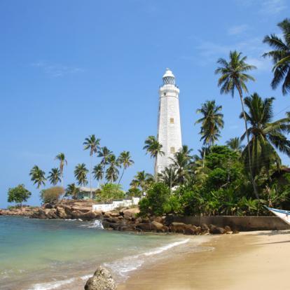 Circuit au Sri Lanka - L'été en Famille