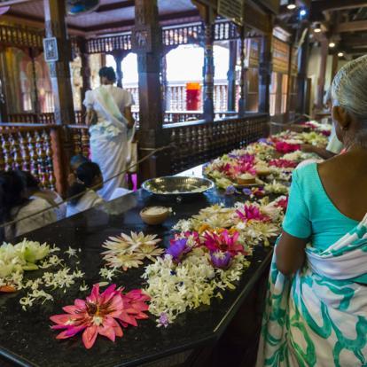 Voyage au Sri Lanka - L'hiver en famille