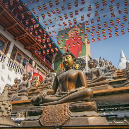 Circuit au Sri Lanka - Le Grand Tour