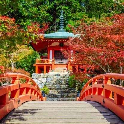 Circuit au Japon - Sur les sentiers des Alpes japonaises